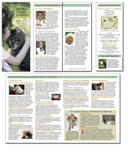 Brochure Design for Veterinary Clinic