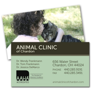 Business Card Design for Veterinary Clinic