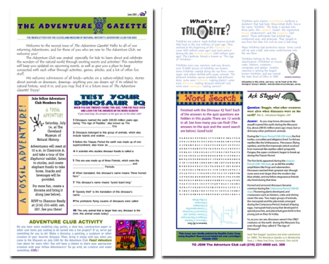 Newsletter Design for Kids Club